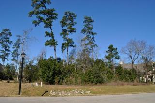 5511 Harvest Oak Landing Drive, Spring TX