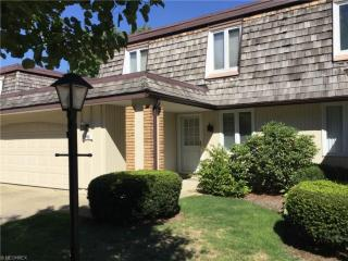 8548 Tanglewood Trl #10, Chagrin Falls, OH 44023