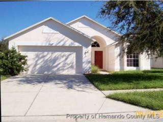 4873 Glenburne Drive, Spring Hill FL