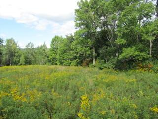Pearl Lake Road, Landaff NH