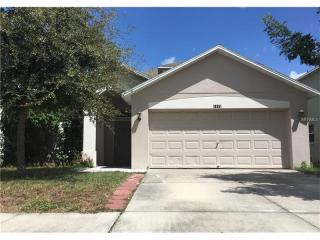 18351 Dajana Avenue, Land O' Lakes FL