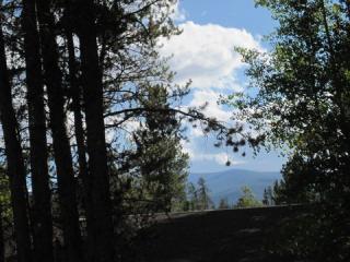 188 Gcr 839 Deer Road, Fraser CO