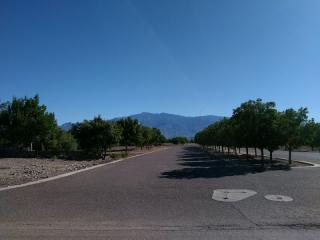 6620 West Palo Verde Lane, Pima AZ