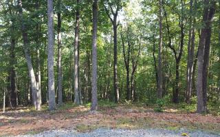 L 20r Settlement Trail, Ellijay GA