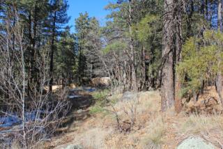 795 East Ponderosa Parkway, Flagstaff AZ