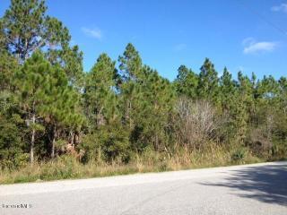 3230 Pheasant Trail, Mims FL