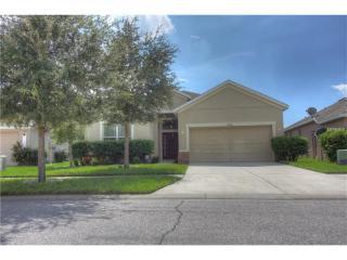 12721 Whitney Meadow Way, Riverview FL