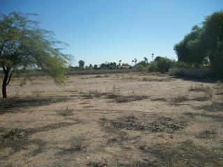 West 134th Lane, Litchfield Park AZ