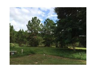 504 Yellow Submarine Court, Groveland FL
