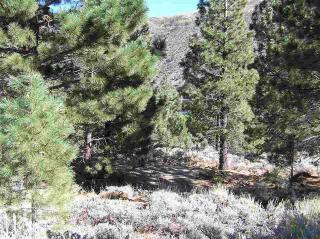 4 Twin Creek Drive, Bridgeport CA