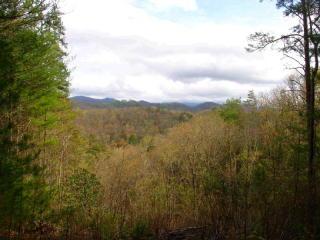 8.87 Acs Pony Ghost Trail, Blue Ridge GA