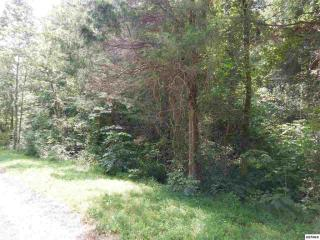 Cody View Way Lot #13, Sevierville TN