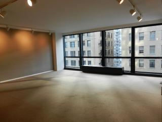 910 N Lake Shore Dr #918, Chicago, IL 60611