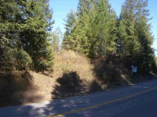 39415 North Elk Chattaroy Road, Elk WA