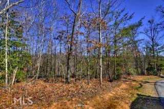 Stuart Highlands, Mineral Bluff GA