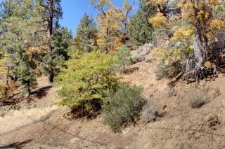 867 Menlo, Big Bear Lake CA