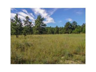 15 Winchester Drive #47, Roundup MT