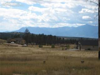 14020 Black Forest Road, Colorado Springs CO