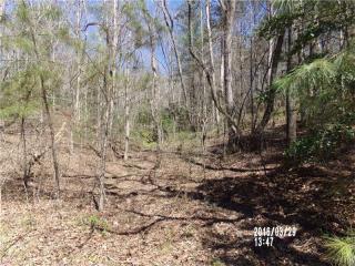 12 Gunstock Creek Lane, Ellijay GA