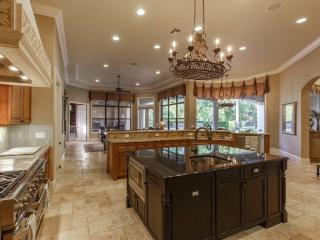 25555 High Hampton Cir, Sorrento, FL 32776