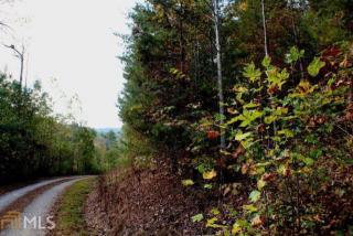 Pleasant Hill Trail, Ellijay GA