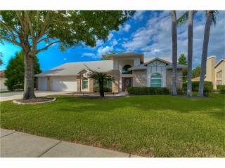 17911 Clear Lake Drive, Lutz FL