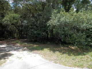 Southeast 156th Place, Summerfield FL