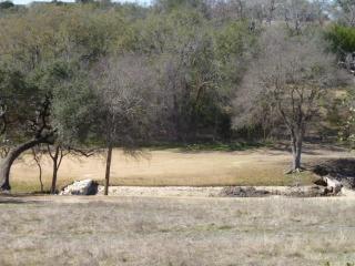42026 Preston Trail, Whitney TX