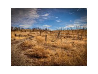 2 2b Trails End Road, Roundup MT