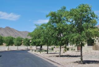 18893 North 97th Place #3715, Scottsdale AZ