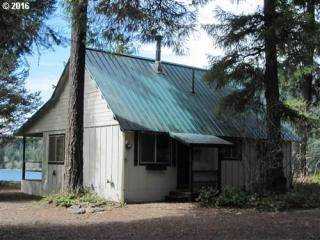 Cabin 31 Northwoods, Cougar WA