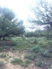 223 Unit 10, Tierra Amarilla NM