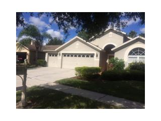 10212 Thicket Point Way, Tampa, FL 33647