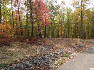 Lot 65 Coopers Hawk Way, Sevierville TN