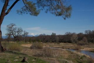 16875 Little Lake Lane, Cottonwood CA