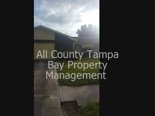 6222 Palmview Ct, Tampa, FL 33625