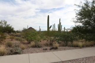 2079 South Little Dipper Drive #55, Tucson AZ