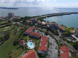 6035 Bahia Del Mar Boulevard #247, Saint Petersburg FL