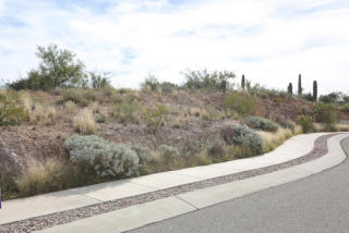 2111 South Starr Sky Drive #35, Tucson AZ