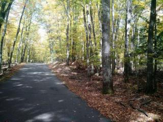 LOT 33 33 FOREST LAKE Road East, Land O' Lakes WI