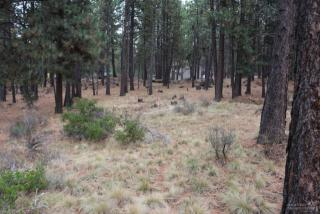 60134 Turquoise Road, Bend OR