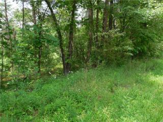 7.7 Ac Blackknob Church Road, Ranger GA