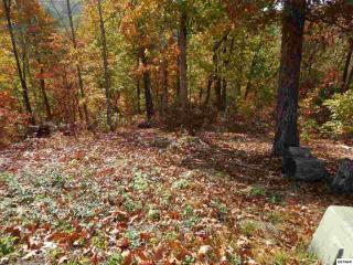 Lot 24 Coopers Hawk Way, Sevierville TN
