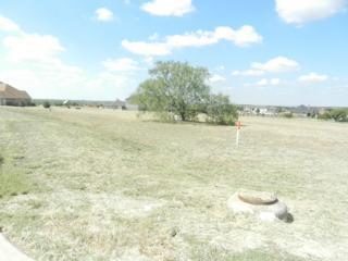 1619 Rohne Drive, Cedar Hill TX