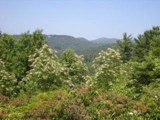1704 Highlands Mountain Club Road, Highlands NC