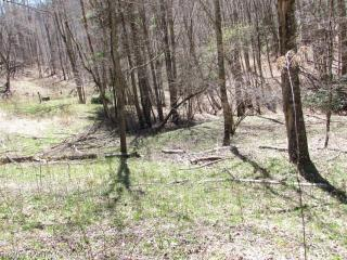 1400 Fox Creek Road, Burnsville NC
