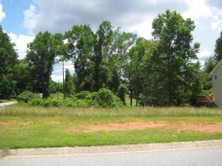 153 Scarlett Place Drive, Bowdon GA