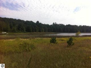 5614 Bartlett Lake Trail, Buckley MI