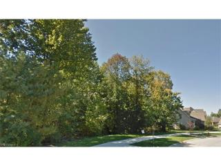South L 525 Crown Colony, Avon OH