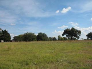 County Road 1166, Brashear TX
